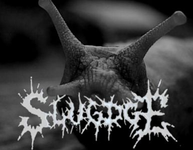 slugdge-interview