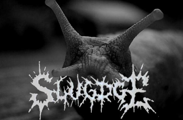 slugdge-interview