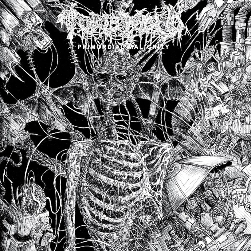 tomb mold - primordial cover