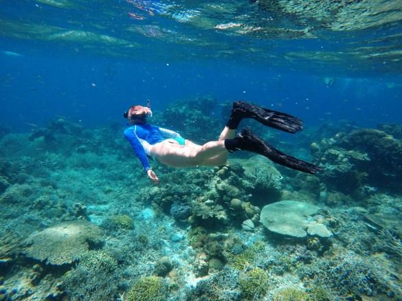 Snorklanje na koralnih grebenih, Palawan Filipini