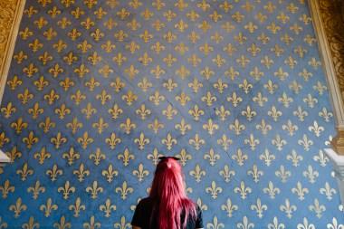 Palača Vecchio, Firence