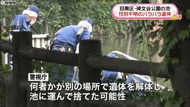 Human body parts were found at Himonya Park in Meguro Ward on Thursday