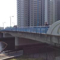 瑞光橋全景