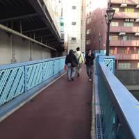 神田ふれあい橋全景