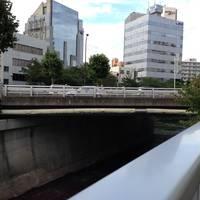 高田橋全景