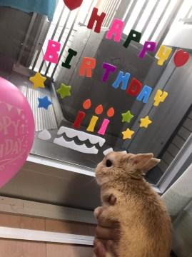 会社の後輩にも誕生日を祝ってもらいました