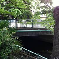 新砂子路橋全景