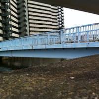 富士見歩道橋全景