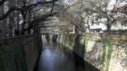 20141112 Naka Meguro