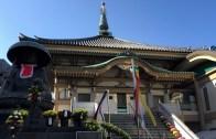 Sugamo Kiku Matsuri