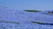 Ibaraki Hitachi Seaside