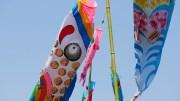Koinobori Village Festival