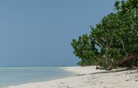 Taketomi Island Beaches
