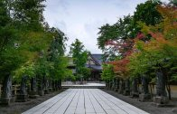 Kyu-Chikurin-In Garden
