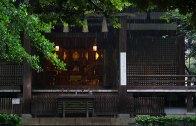 okusawa_sh
