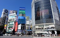 Shibuya Crossing Part II