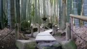 Hokokuji Temple