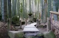 Kamakura Hokokuji Temple