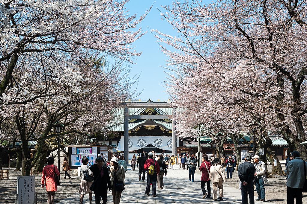 Yasukuni Shrine (The Sakura Shrine)