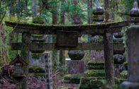 Okunoin Cemetery Part I