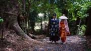Heian Isho and 800 years old trees