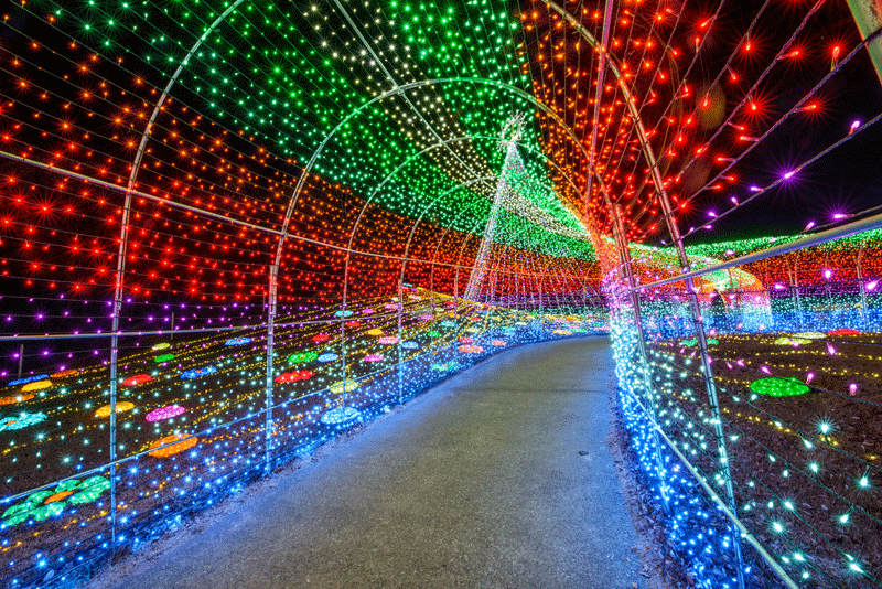 The Weekender Guide To Tokyos Holiday Season Guides Events