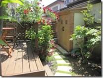 カンナ物置のある庭