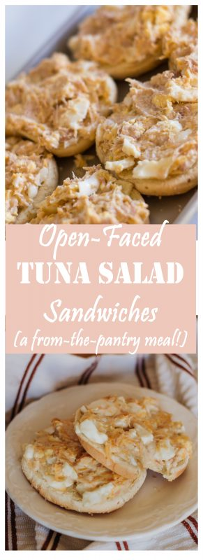 Open-Faced Tuna Sandwiches (a super quick and easy meal using ingredients you're almost sure to have on hand!)