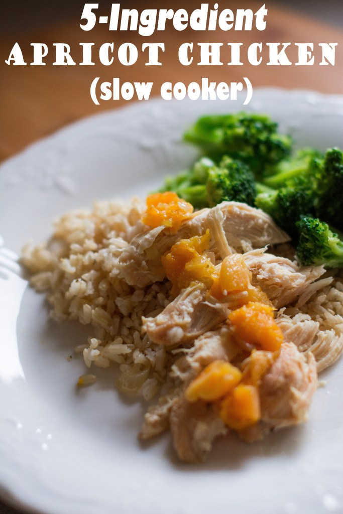 5-Ingredient Apricot Chicken (Slow Cooker) // To Love and To Learn