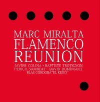 Marc Miralta Flamenco Reunion