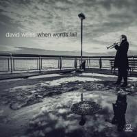 Davis Weiss_Whjen Words Fail_Motema Music_2014