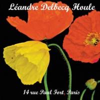 Leandre-Delbecq-Houle_14 rue Paul Fort Paris_Leo Records_2015