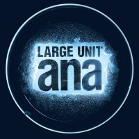 Large Unit_ANA_PNL Records_2016