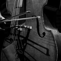 32ème Festival Jazzèbre -II-: Claude Tchamitchian, Bedmakers y Stéphan Oliva & Sébastien Boisseau (13 de octubre de 2020. La Casa Musicale, Perpignan -France-) [Conciertos de jazz] Por Joan Cortès