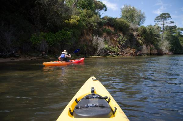 kayak rental tomales bay, near point reyes, Kayaking, Boating, Bay Point Reyes, National Seashore Inverness, Marshall Lighthouse, Camping, Oysters Nature, Bioluminescence, Paddle Expeditions, Explore, Adventure, Water, Outdoors