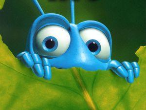 O Bug