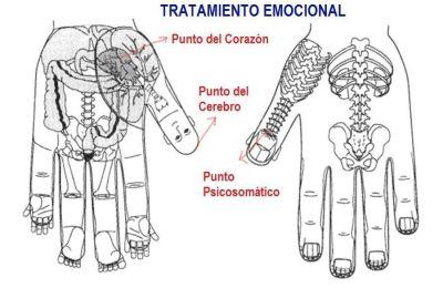 Tratamiento Emocional Terapia Su Jok