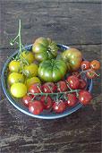 Tomaten-Teller aus drei Ländern (Bildquelle: Henry)