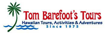 Tom Barefoot's Tours offers discounted Activities Since 1975
