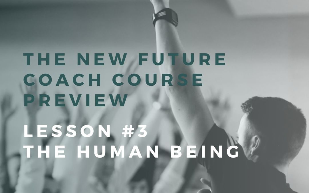 New Course Preview: Lesson #3 The Human Being