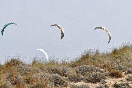 Flysurfer Speed 3 kites over the dunes