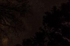haind-woods-stars-redo-3