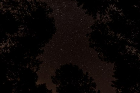 haind-woods-stars-redo-6