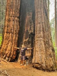 Calaveras Big Trees State park.