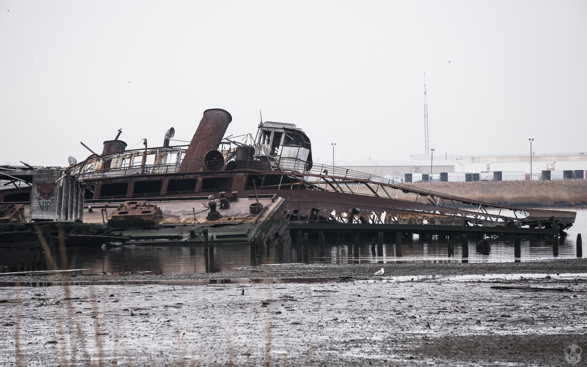 Abandoned Shipyard in Staten Island