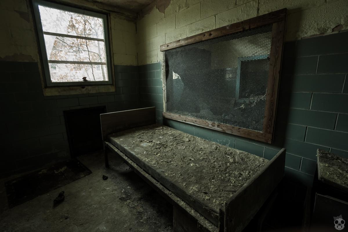 forest_haven_asylum116