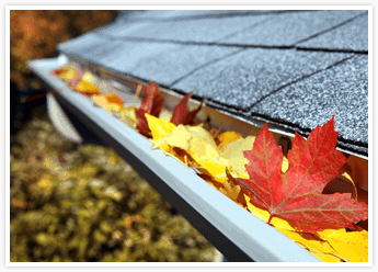 Gutter Cleaning Roofing Maintenance in Orange County with Tom Byer