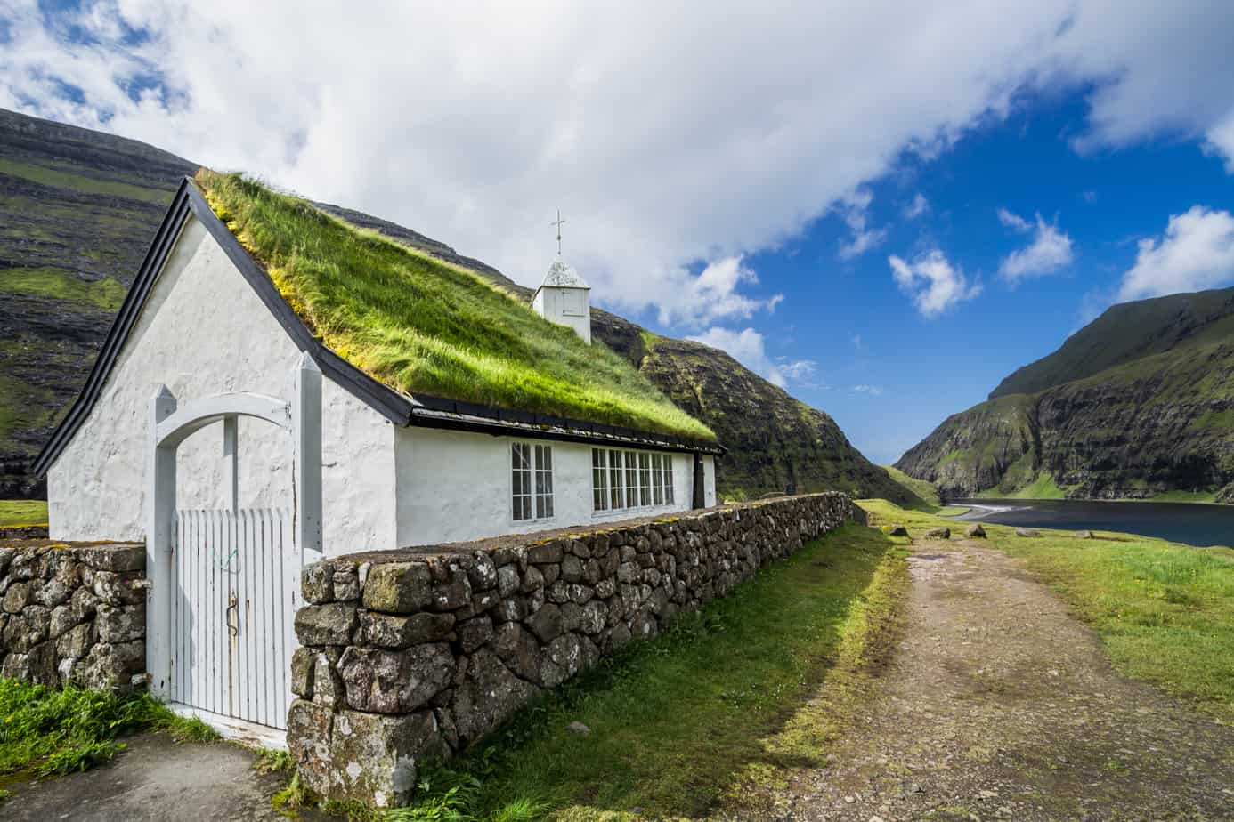 Advantages And Disadvantages Of Green Roofs