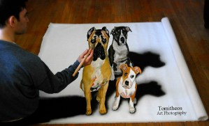 3D pet portraits