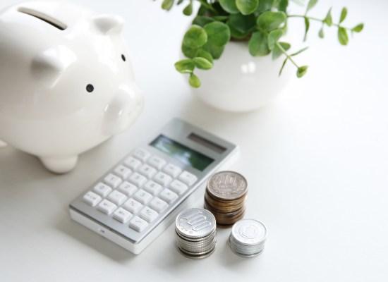 spaarvarken, rekenmachine, geld en plantje